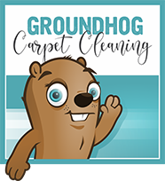 Groundhog Carpet Cleaning